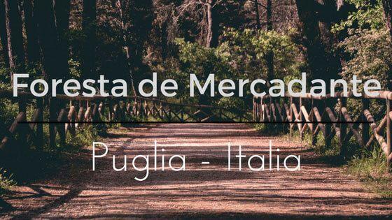 Foresta Mercadante Italia